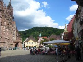 Der Freiburger Domplatz